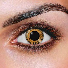 Big Eye Sweet Honey Contact Lenses
